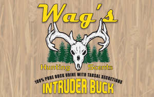 Wags Hunting Scents - Intruder Buck